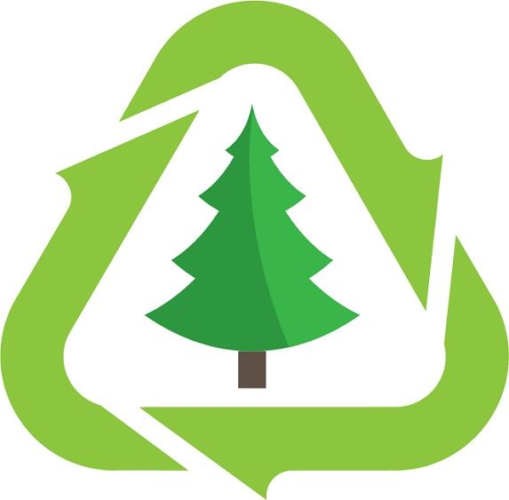 green evergreen tree surrounded by recycling symbol